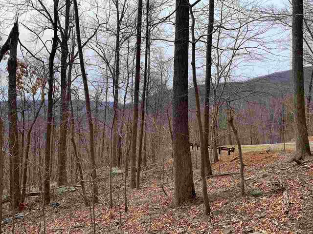260 Far Knob Climb, Nellysford, VA 22958 (MLS #600307) :: Jamie White Real Estate