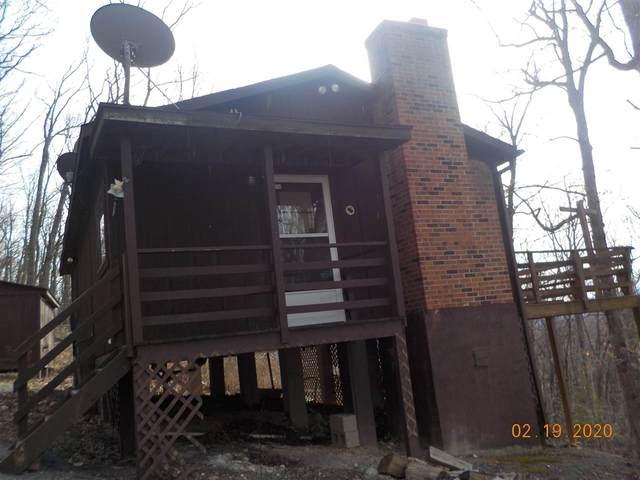 158 Cabin Ln, MOUNT JACKSON, VA 22842 (MLS #600364) :: Real Estate III