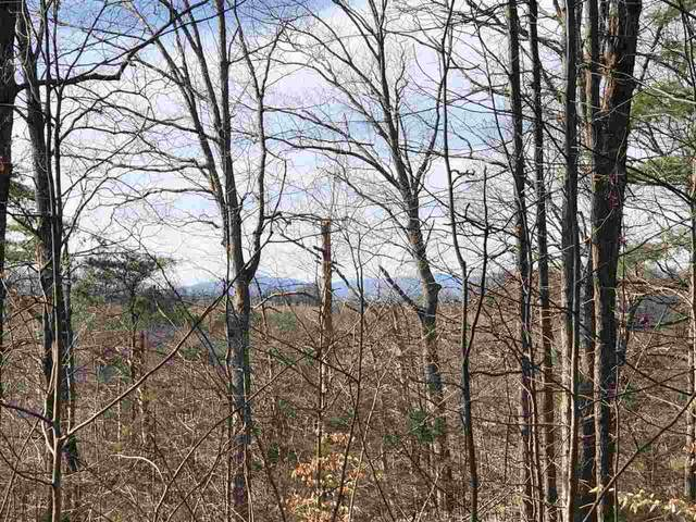 TBD Little Skyline Dr, ORANGE, VA 22960 (MLS #600365) :: Real Estate III