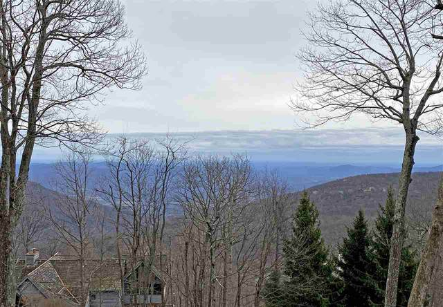 328 Chestnut Pl, Wintergreen Resort, VA 22967 (MLS #600397) :: KK Homes