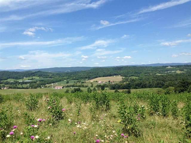 111 acres Ridge Rd, Timberville, VA 22853 (MLS #600420) :: Real Estate III
