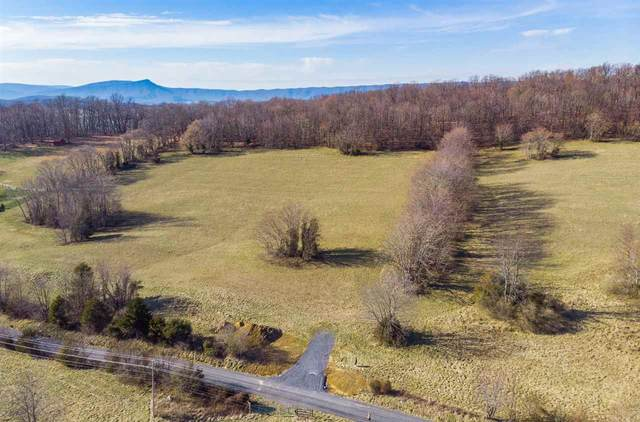 8.46 Acres on Goose Creek Rd, Raphine, VA 24472 (MLS #600421) :: KK Homes