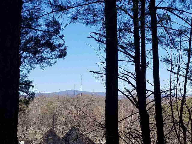 Lot 27 Guildford Farm Rd, RUCKERSVILLE, VA 22968 (MLS #600467) :: Jamie White Real Estate