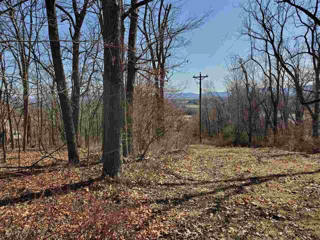 TBD Hilltop Terrace Rd, STAUNTON, VA 24401 (MLS #600674) :: Jamie White Real Estate