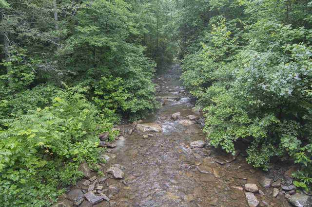 Lot 5 Rabbits Foot Rd, HINTON, VA 22831 (MLS #601496) :: Real Estate III