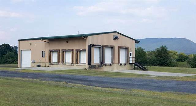 1067 Industrial Park Rd, QUICKSBURG, VA 22847 (MLS #601531) :: KK Homes