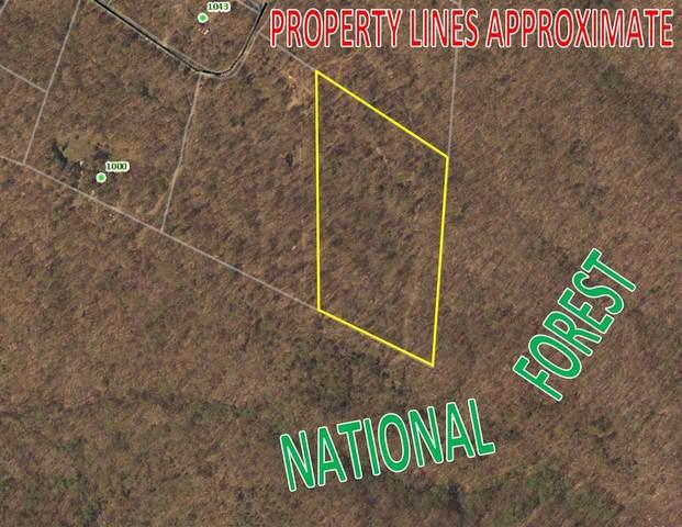 0 Secession Ln #20, New Market, VA 22844 (MLS #601551) :: Jamie White Real Estate