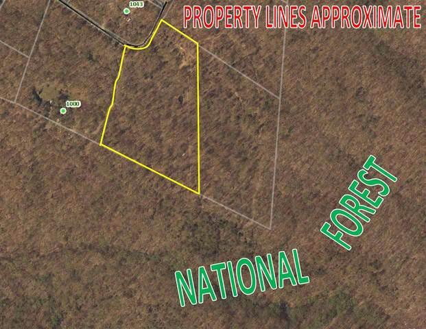 0 Secession Ln #21, New Market, VA 22844 (MLS #601552) :: Jamie White Real Estate