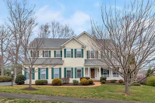 1281 Still Meadow Ave, CHARLOTTESVILLE, VA 22901 (MLS #601603) :: Jamie White Real Estate
