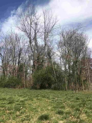 0 Dogwood Dr, LOUISA, VA 23093 (MLS #601666) :: Real Estate III