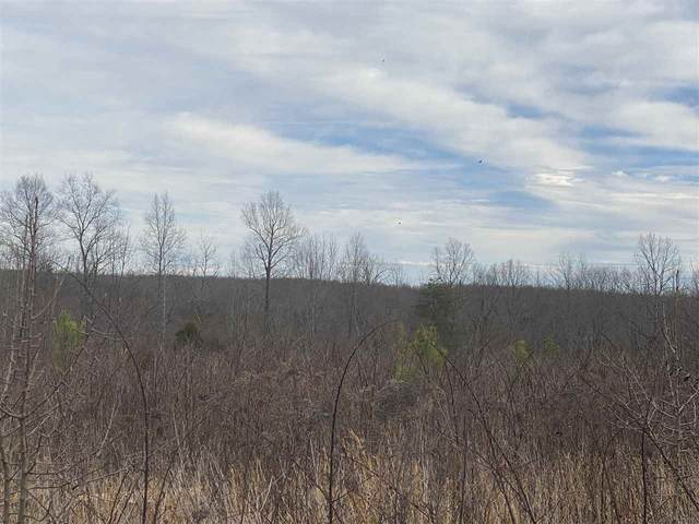 Lot 7 Briery Farm Rd, SCOTTSVILLE, VA 24590 (MLS #601825) :: KK Homes