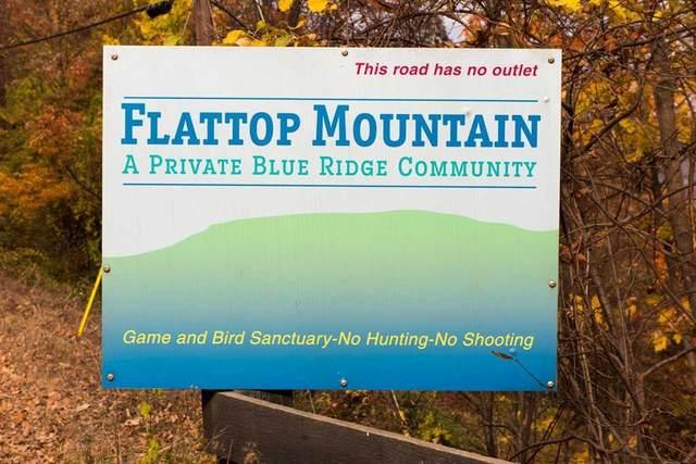 Raven Way, FREE UNION, VA 22940 (MLS #601853) :: Jamie White Real Estate