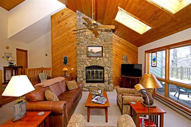 1095 Devils Knob Loop, Wintergreen Resort, VA 22967 (MLS #601945) :: Real Estate III
