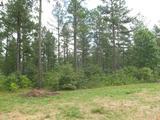6 Sclaters Ford Rd #6, Palmyra, VA 22963 (MLS #601973) :: Real Estate III