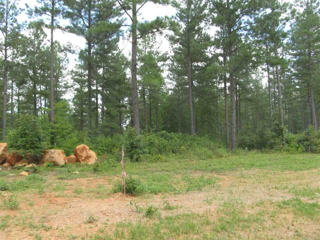 7 Sclaters Ford Rd #7, Palmyra, VA 22963 (MLS #602021) :: Real Estate III