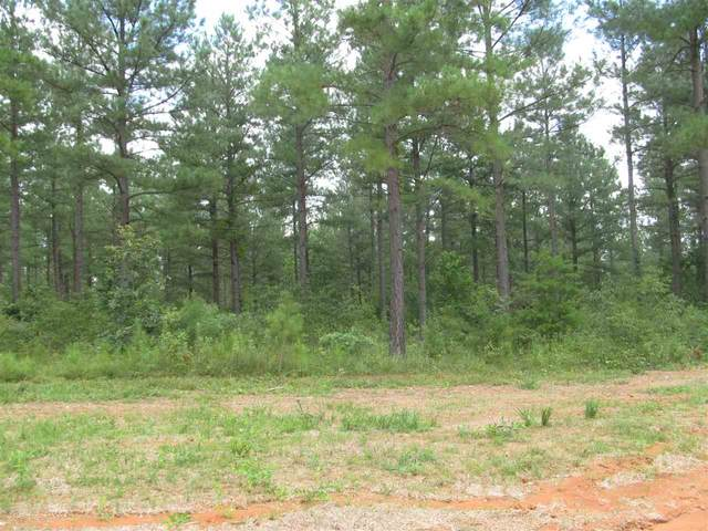 5 Sclaters Ford Rd #5, Palmyra, VA 22963 (MLS #602026) :: Real Estate III