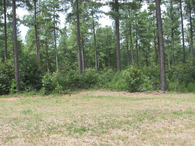 11 Sclaters Ford Rd #11, Palmyra, VA 22963 (MLS #602027) :: Real Estate III