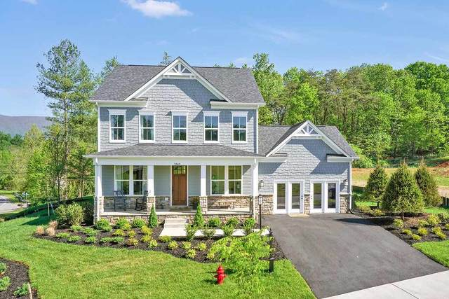 33 Oxbow Dr, Crozet, VA 22932 (MLS #602075) :: Real Estate III