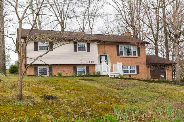 186 River View Dr, Verona, VA 24482 (MLS #602175) :: Real Estate III