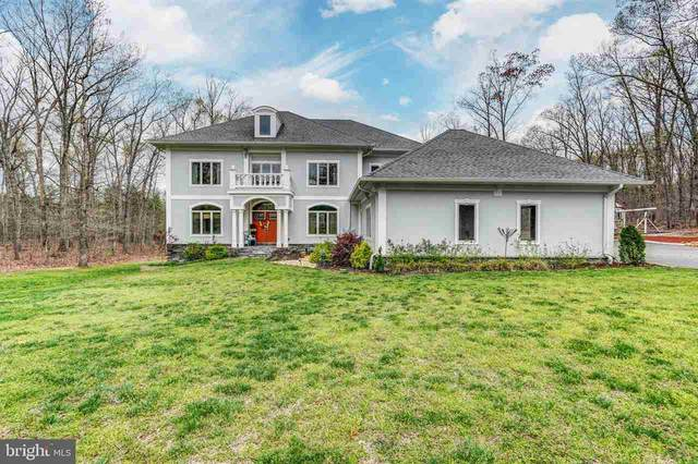 65 Little Sorrel Way, MINERAL, VA 23117 (MLS #602324) :: Real Estate III