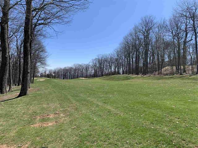 125 Bear Run, Roseland, VA 22967 (MLS #602325) :: Real Estate III