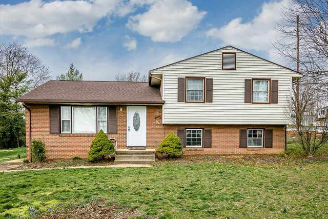 127 Augusta Cir, HARRISONBURG, VA 22801 (MLS #602573) :: Jamie White Real Estate