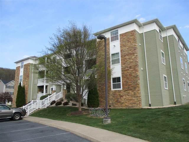 515 Davis Mills Dr #301, HARRISONBURG, VA 22801 (MLS #602748) :: Jamie White Real Estate