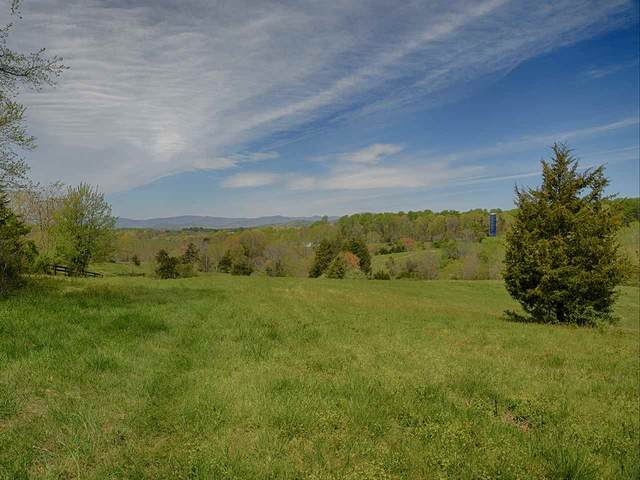 TBD-2 Repton Mill Rd, Madison, VA 22727 (MLS #603207) :: Real Estate III