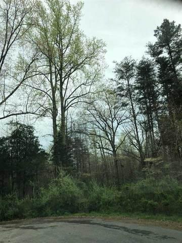 0 Ebenezer Rd, MINERAL, VA 23117 (MLS #603500) :: Jamie White Real Estate