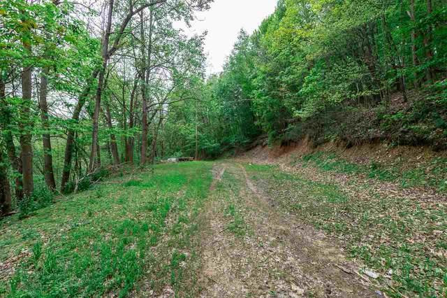 0 Piney Mountain Dr, Stanley, VA 22851 (MLS #603639) :: Jamie White Real Estate