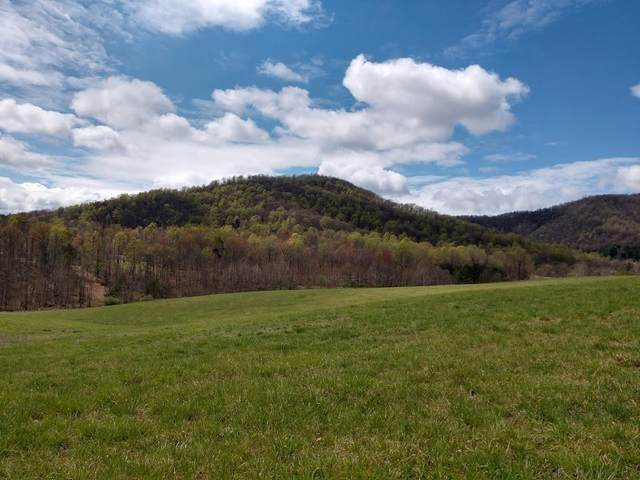 2217 Garr Mountain Rd, Madison, VA 22727 (MLS #603974) :: Real Estate III