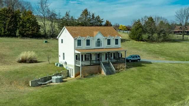 65 Good View Dr, Raphine, VA 24472 (MLS #604008) :: KK Homes