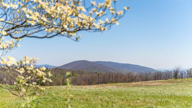 Lot 3 Elk Meadow Dr, AFTON, VA 22920 (MLS #604052) :: Real Estate III