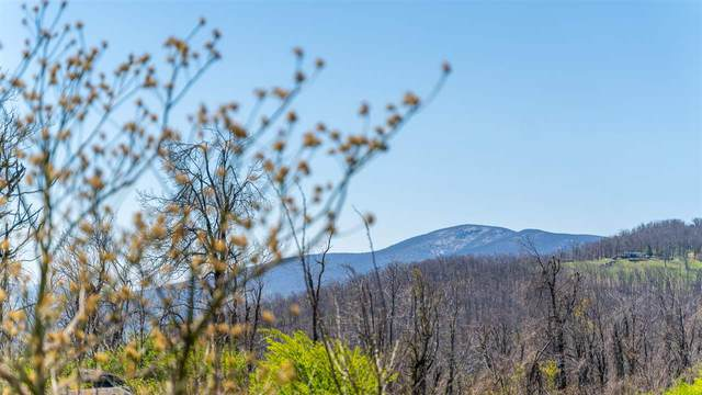 Lot 12 Elk Meadow Dr, AFTON, VA 22920 (MLS #604059) :: Jamie White Real Estate