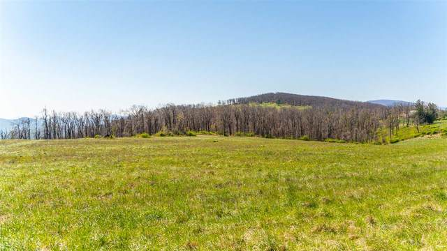 Lot 14 Elk Meadow Dr, AFTON, VA 22920 (MLS #604061) :: Jamie White Real Estate