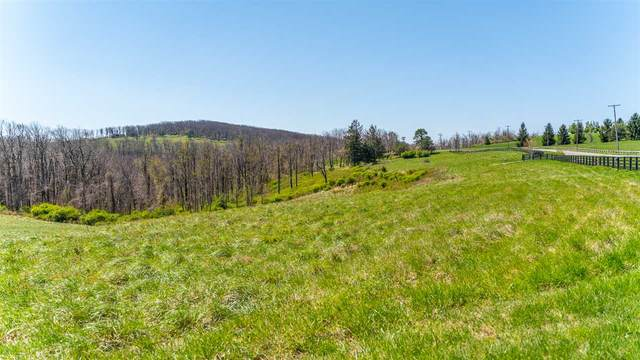 Lot 15 Howardsville Tpke, AFTON, VA 22920 (MLS #604062) :: Real Estate III