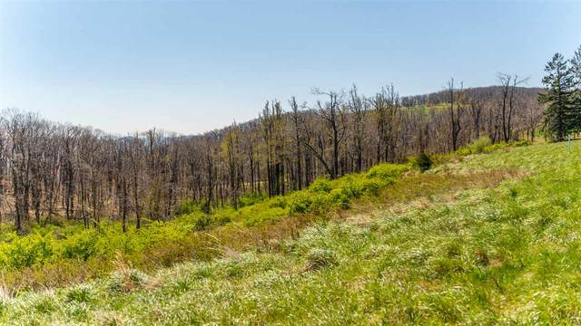 Lot 16 Howardsville Tpke, AFTON, VA 22920 (MLS #604063) :: Jamie White Real Estate