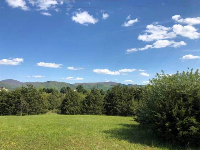 Meadow Grove Dr, LEXINGTON, VA 24450 (MLS #604167) :: KK Homes