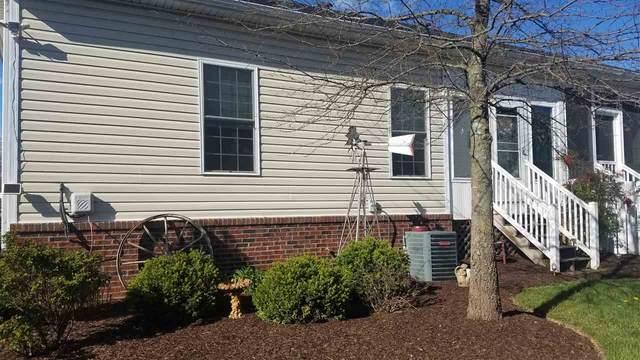 115 Hollen Mill Ct, BRIDGEWATER, VA 22812 (MLS #604182) :: KK Homes