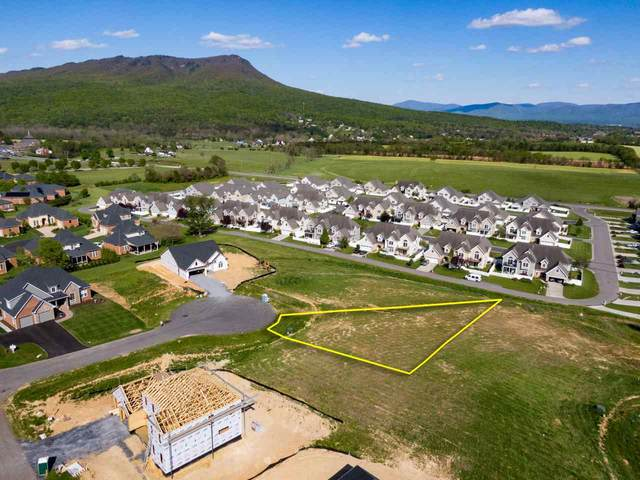 130 Brompton Ct #238, ROCKINGHAM, VA 22801 (MLS #604261) :: KK Homes