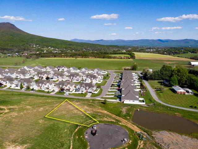 135 Alnwick  Ct #244, ROCKINGHAM, VA 22801 (MLS #604268) :: Jamie White Real Estate