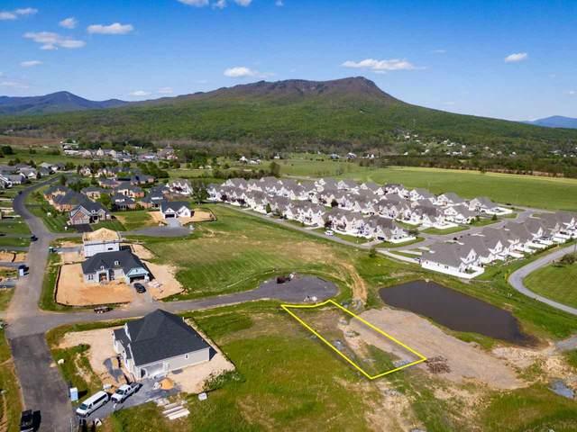 130 Alnwick  Ct #248, ROCKINGHAM, VA 22801 (MLS #604270) :: Jamie White Real Estate