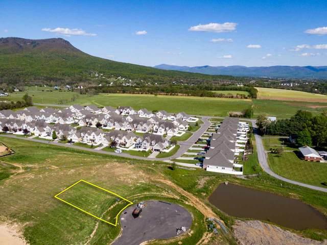 125 Alnwick  Ct #243, ROCKINGHAM, VA 22801 (MLS #604271) :: Jamie White Real Estate