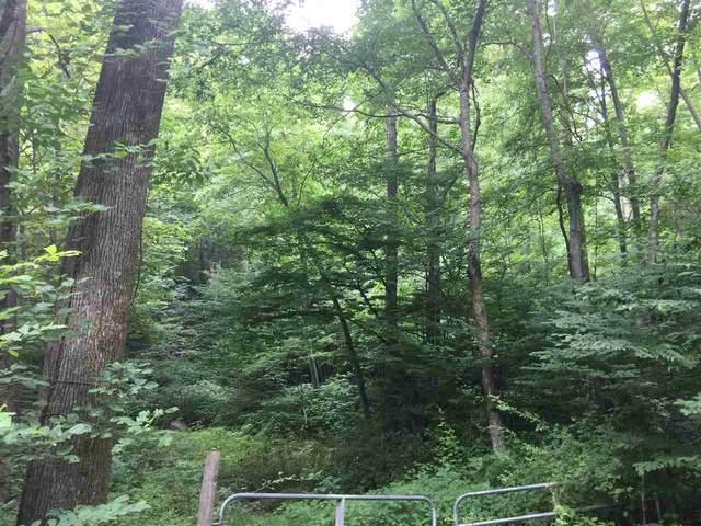 75 Jarmans Gap Rd, Crozet, VA 22932 (MLS #604404) :: Real Estate III