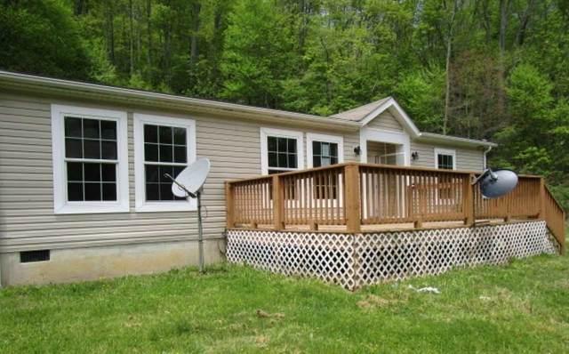 691 Zinks Mill School Rd, Vesuvius, VA 24483 (MLS #604746) :: Real Estate III