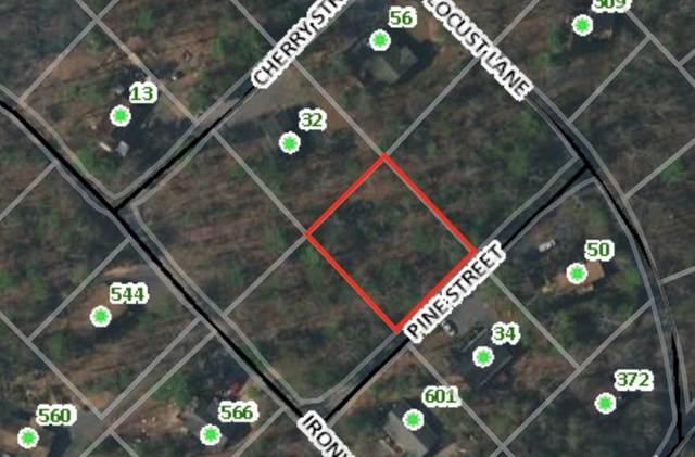 TBD Pine St Lot 349, Basye, VA 22810 (MLS #605266) :: Real Estate III