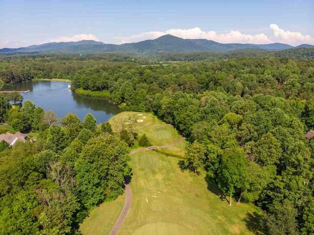 415 Stoney Creek East #18, Nellysford, VA 22958 (MLS #605460) :: Real Estate III