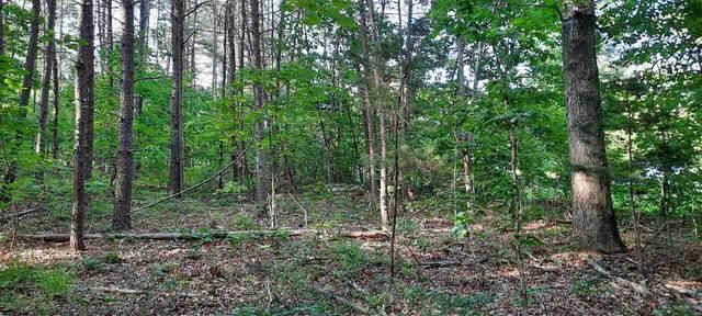 6101 S Spotswood Dr, GORDONSVILLE, VA 22942 (MLS #605543) :: Jamie White Real Estate