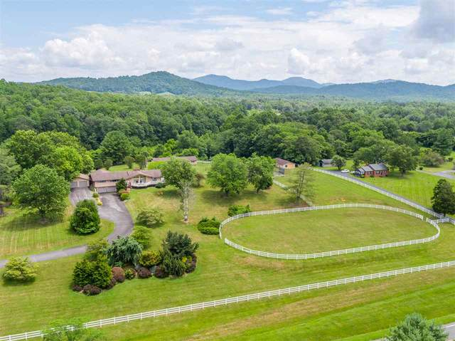 10053 Critzers Shop Rd, AFTON, VA 22920 (MLS #605922) :: Real Estate III