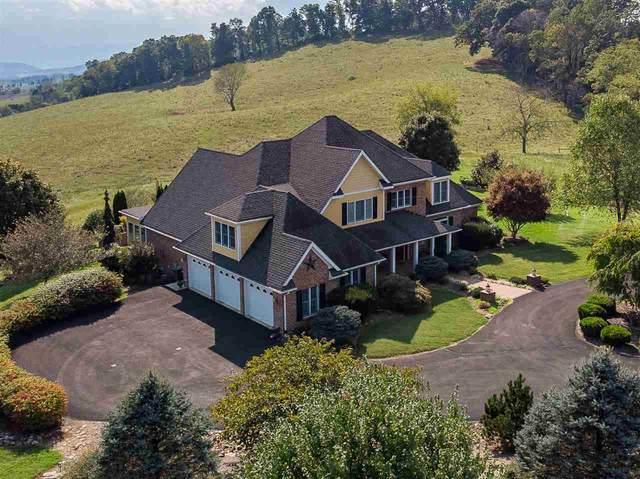 320 Whistle Creek Dr, LEXINGTON, VA 24450 (MLS #606296) :: KK Homes